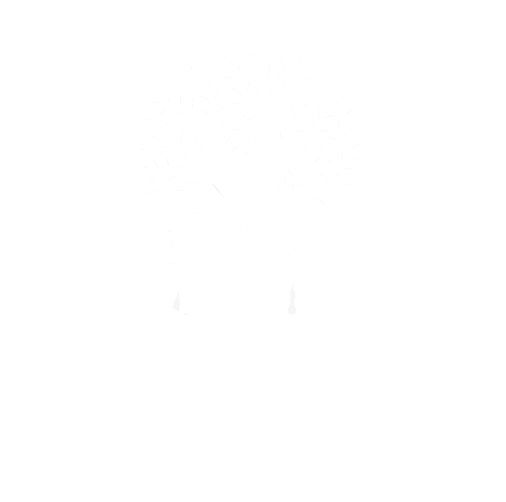 Bollebos